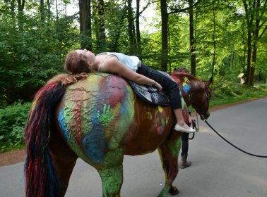 fuchsbau-pferd